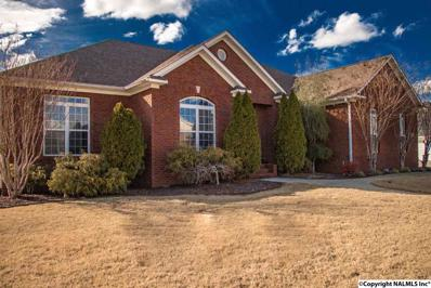 216 Jackies Terrace, Madison, AL 35758
